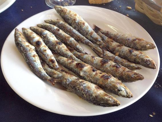 El Tronky: temporada de sardinas.